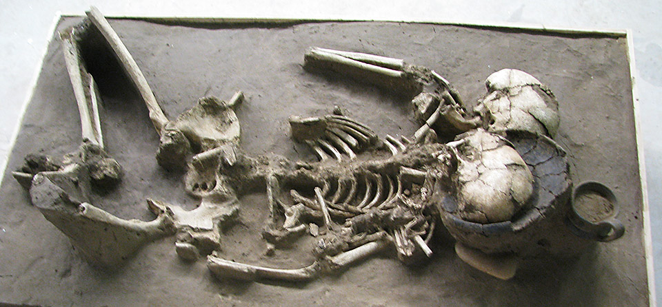 scythian skeletons