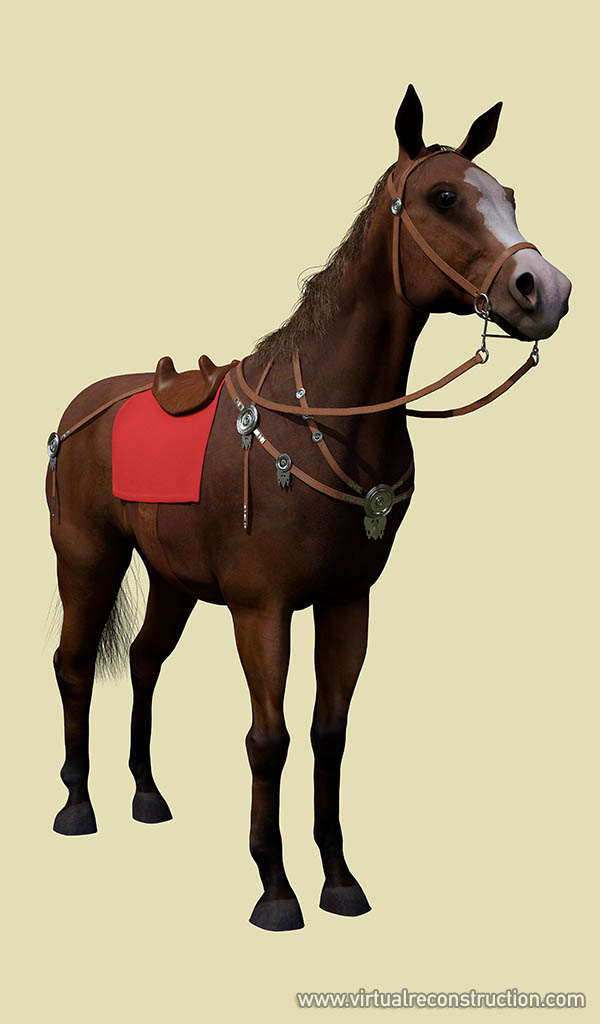 Reconstructed trappings on a horse.